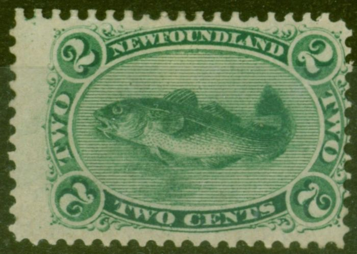 Rare Postage Stamp from Newfoundland 1865 2c Yellowish Green SG25 Fine Mtd Mint