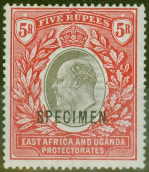 Valuable Postage Stamp from B.E.A KUT 1903 5R Grey & Red Specimen SG13s Fine & Fresh Lightly Mtd Mint