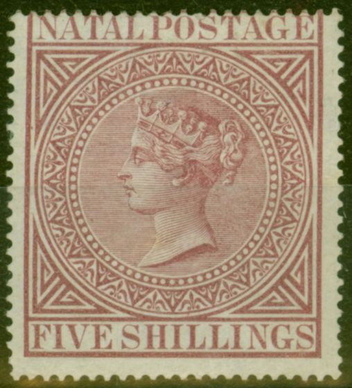 Valuable Postage Stamp from Natal 1882 5s Maroon SG71 Fine Mtd Mint