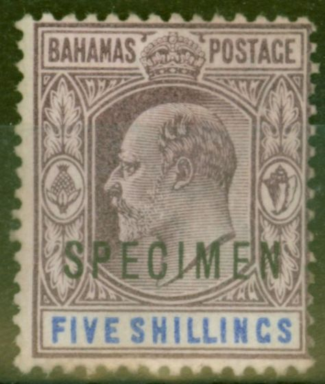 Valuable Postage Stamp from Bahamas 1902 5s Dull Purple & Blue Specimen SG69s Fine Lightly Mtd Mint
