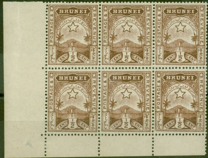 Collectible Postage Stamp from Brunei 1895 1/2c Brown SG1 Fine MNH Corner Block of 6