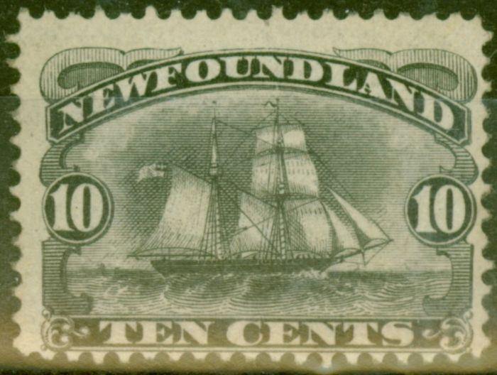 Old Postage Stamp from Newfoundland 1887 10c Black SG54 Fine MNH Regummed