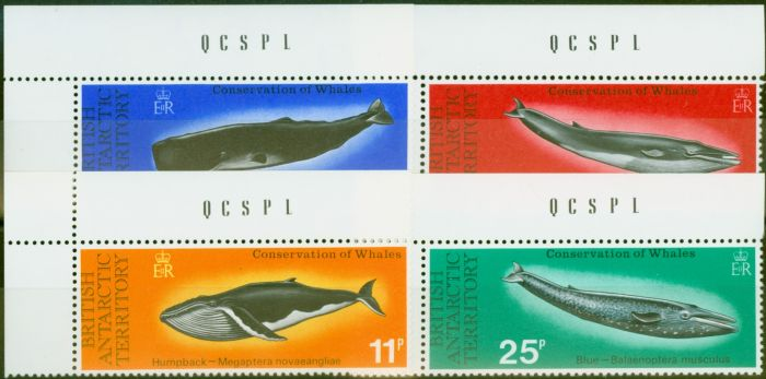 Old Postage Stamp from B.A.T 1977 Whales set of 4 SG79-82 V.F MNH