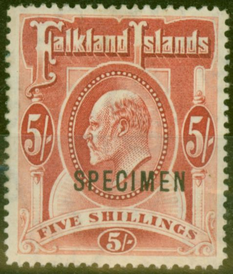 Rare Postage Stamp from Falkland Islands 1904 5s Red Speciman SG50s Fine Mtd Mint