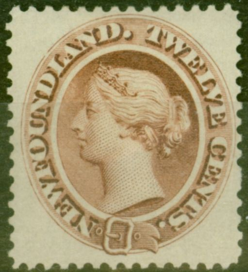 Old Postage Stamp from Newfoundland 1865 12c Red-Brown SG28 Fine & Fresh Mtd Mint