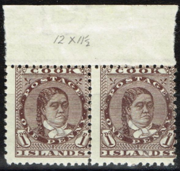 Valuable Postage Stamp from Cook Islands 1893 1d Brown SG5 Fine MNH & LMM Marginal Pair