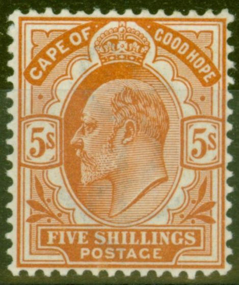 Rare Postage Stamp from Cape of Good Hope 1903 5s Brown-Orange SG78 V.F Very Lightly Mtd Mint