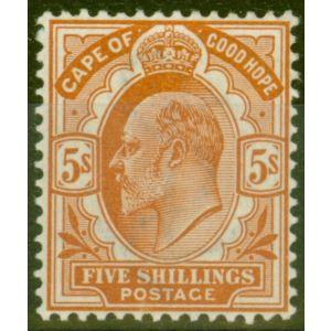 Cape of Good Hope 1903 5s Brown-Orange SG78 V.F Very Lightly Mtd Mint