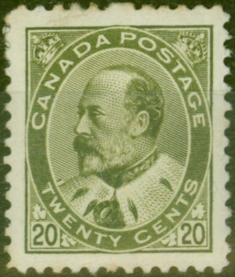 Old Postage Stamp from Canada 1903 20c Dp Olive-Green SG186 Fine Mtd Mint