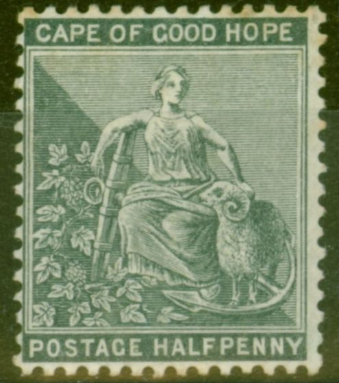 Rare Postage Stamp from Cape of Good Hope 1882 1/2d Grey-Black SG40a Good Mtd Mint