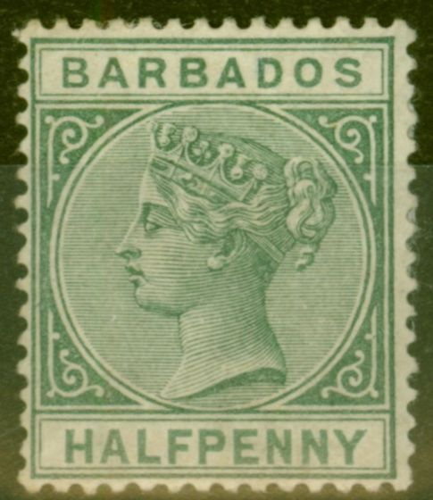 Collectible Postage Stamp from Barbados 1882 1/2d Dull Green SG89 Fine Mtd Mint